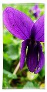 Small Violet Flower Beach Sheet