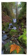Small Waterfall At Lower Lewis River Falls Beach Towel