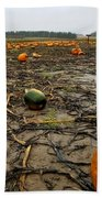 Smashing Pumpkins Beach Towel