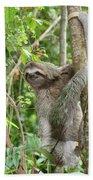 Smiling Sloth Beach Towel
