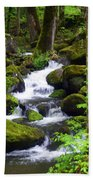 Smokey Mountain Stream Beach Towel