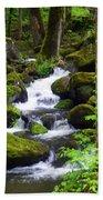Smokey Mountain Stream Beach Towel