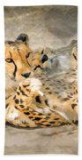 Smokin Cheetah Love Beach Towel