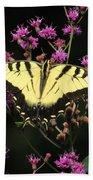 Smoky Mountain Butterfly Beach Towel
