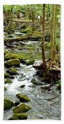 Smoky Mountain Stream 1 Beach Towel