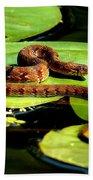 Snake Life Beach Towel