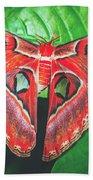 Snakehead Moth Beach Towel