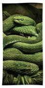 Snakes Alive Beach Towel