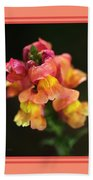 Snapdragon Flowers With Design Beach Towel