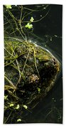 Snapping Turtle Head Beach Towel