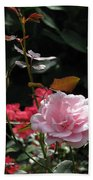 Sniff - Tea Rose Beach Towel