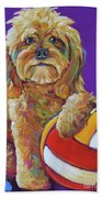 Snoopy Beach Sheet