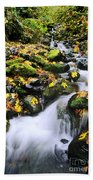 Snoqualmie National Fores Beach Towel
