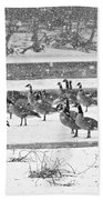 Snow And Geese On The River II Beach Towel