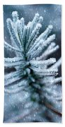 Snow Cover Pine Beach Towel