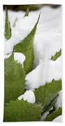 Snow Covered Agave Beach Towel