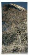 Snow-covered Black Oak Half Dome Yosemite National Park California Beach Towel