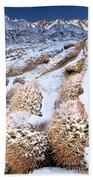 Snow Covered Cactus Below Mount Whitney Eastern Sierras Beach Towel