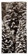 Snow-laden Forest Beach Towel