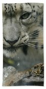 Snow Leopard 11 Beach Towel