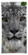 Snow Leopard 5 Posterized Beach Towel