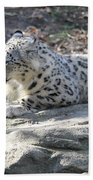 Snow-leopard Beach Towel