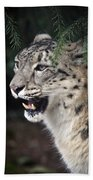 Snow Leopard Portrait Beach Towel