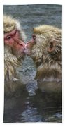 Snow Monkey Kisses Beach Towel