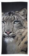 Snow Queen Beach Towel