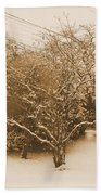 Snow Scene Beach Towel