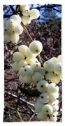 Snowberries Beach Towel