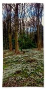 Snowdrop Woods 2 Beach Towel