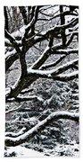 Snowfall And Tree Beach Towel