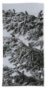 Snowfall Beach Towel