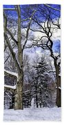 Snowman In Central Park Nyc Beach Towel
