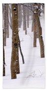 Snowy Aspen Beach Towel