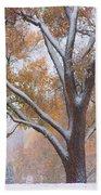 Snowy Autumn Landscape Beach Towel by James BO  Insogna