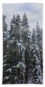 Snowy Christmas At Big Bear Lake Beach Towel