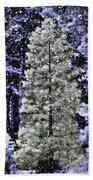 Snowy Day Pine Tree Beach Towel
