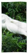 Snowy Egret 12 Beach Towel