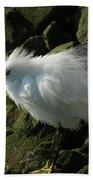 Snowy Egret Fluffy Beach Towel