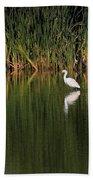 Snowy Egret In Marsh Reinterpreted Beach Towel