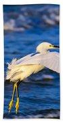 Snowy Egret Lands In Surf Beach Towel