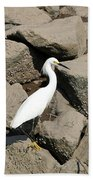 Snowy Egret On The Rocks Beach Towel