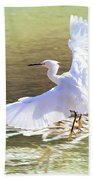 Snowy Egret Over Golden Pond Beach Towel
