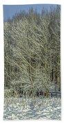 Snowy Landscape #f3 Beach Towel