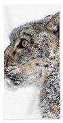 Snowy Snow Leopard Beach Towel
