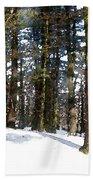 Snowy Wilderness Beach Towel