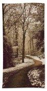 Snowy Woodland Walk One Beach Towel