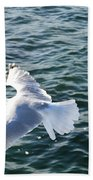 Soaring Waters Beach Towel
